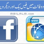 Facebook and other Websites in Urdu Nastaleeq Font